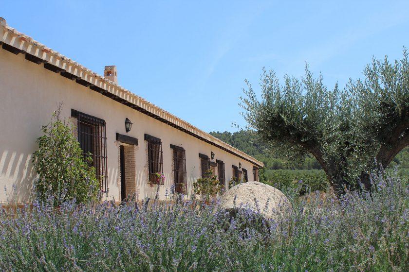Casa Rural<br />&#8220;El Olivo&#8221;